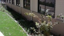 Midson 6 thumbnail: Soft & Hard Landscaping - Kennett Home Project