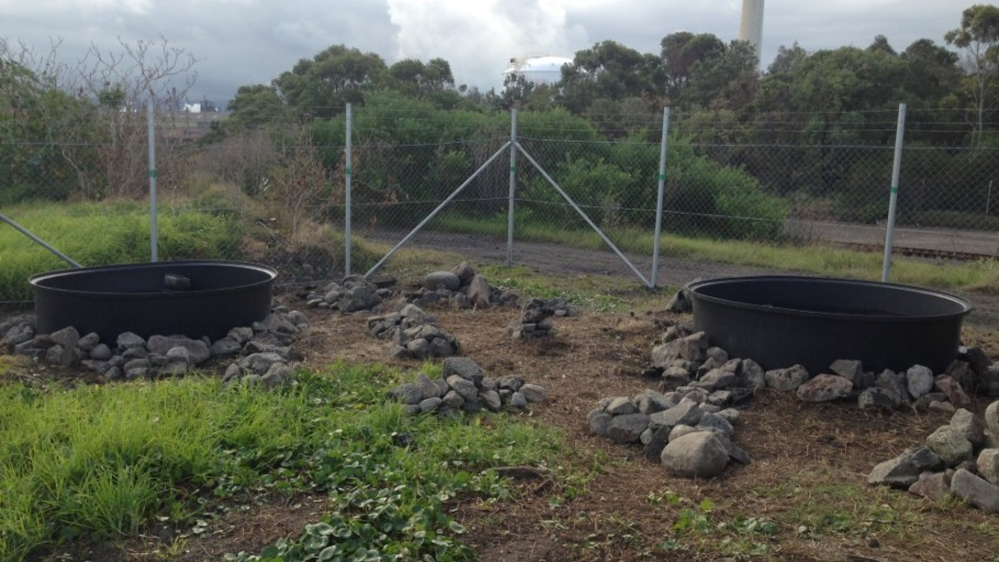 New Troughs: Establishment of Green & Golden Bell Frog Pond Habitat  Project