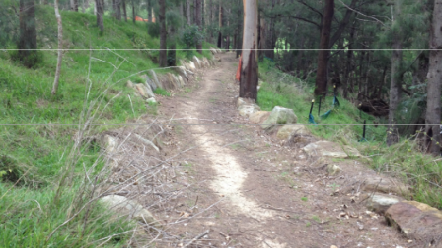 Walking Track Before Rehabilitation: Stonequarry Creek Bush Tucker Garden Project