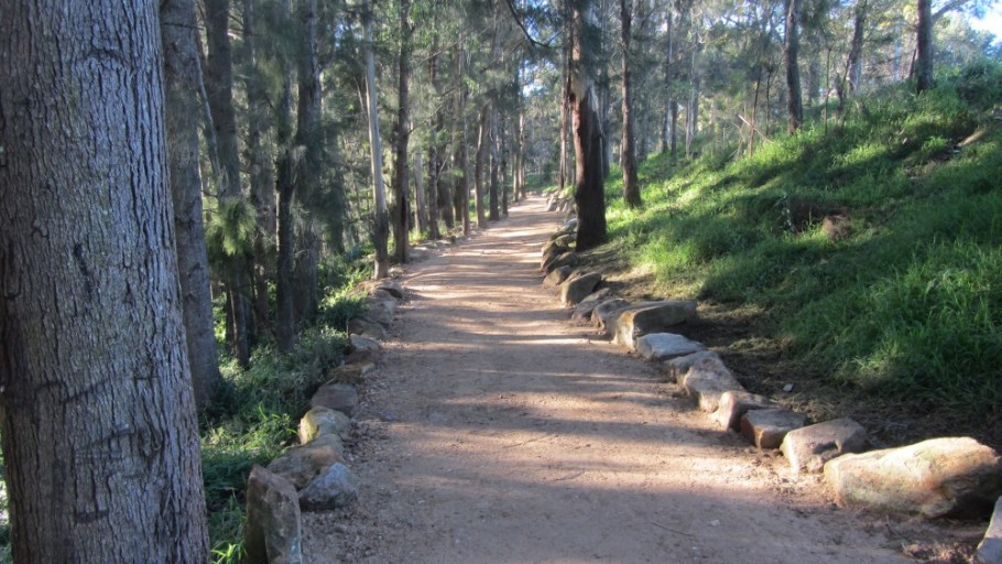 Walking Track After Rehabilitation: Stonequarry Creek Bush Tucker Garden Project