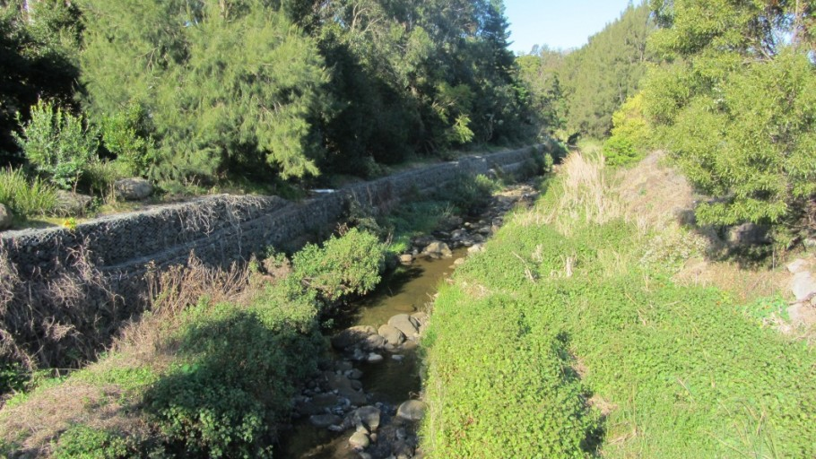 2012 after removal of in stream woody weeds: Byarong Creek Project