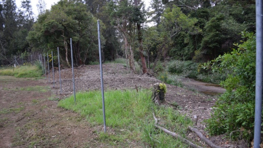 Photo point 2: Mollymoke Farm Creek - Revegetation and Weed Control Project
