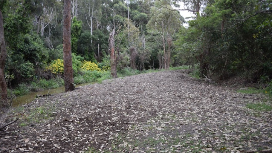 Photo point 3: Mollymoke Farm Creek - Revegetation and Weed Control Project
