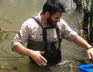 JOSE GARCIA Southern Habitat Project Officer
